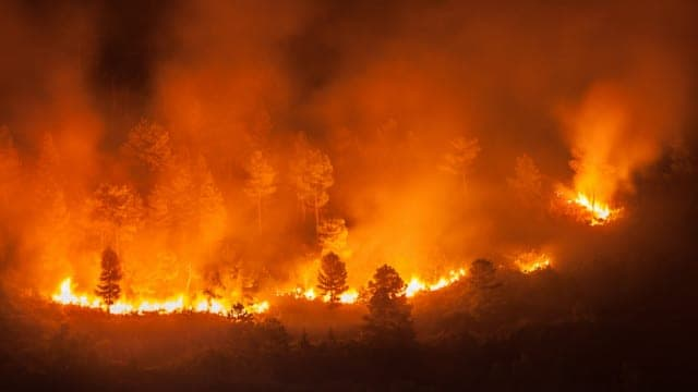 🎧 California Wildfires to Fiery Elections